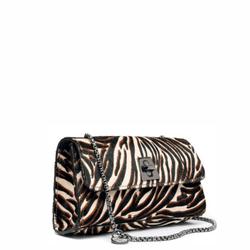816-zebra-B